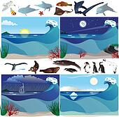 Sea scenarios and animals