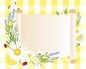 daisy parchment