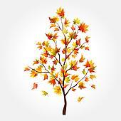 Autumn tree. Maple