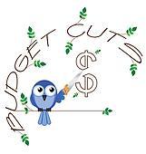 Budget cuts $