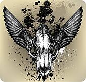 Skulll Lion&wings. Vector illustrat