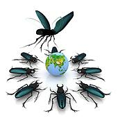 beetles attacking the earth