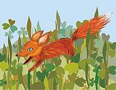 Fox in the grass funny cartoon