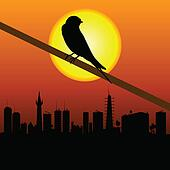 sparrow with city in background vector illustration
