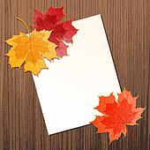 Maple leaves with paper sheet