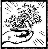 A black and white version of a print of a hand holding a Bonsai tree