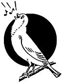 A black and white version of a bird sitting on a tree branch singing situated in front of the sun