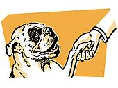 A cleaver Bulldog shaking hands with its owner