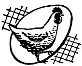A black and white version of a hen with an egg silhouetted behind