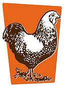An illustration of a hen