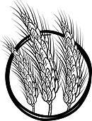 Sheaf of wheat vector