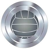 Volleyball icon industrial button