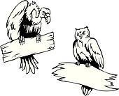 Vulture and owl with boards