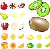 Vector fruit set