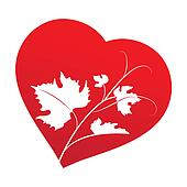 Grape leaves  inside heart frame