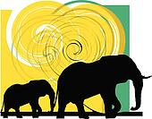 Elefant illustration