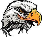 Graphic Head of a Bald Eagle Mascot Vector Illustration