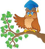Owl teacher theme image 1