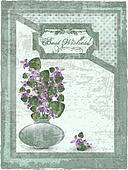 postcard with violet at grunge background