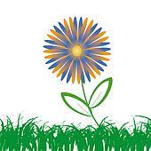 Flower of frame on grass