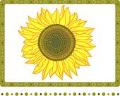 Bright sunflower with 2 borders