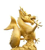 Golden dragon statue in white background