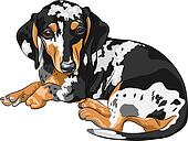 vector sketch dog Dachshund breed lying