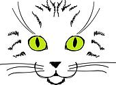 Cute cat face, hand drawing for your design