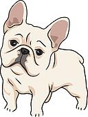 French Bulldog Clip Art - Royalty Free - GoGraph