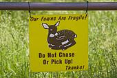 Fragile Fawns sign