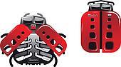 Racing ladybugs
