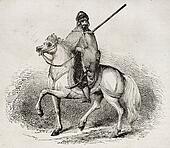 Arab Knight