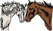 Stallion Sketch. Vector illustration