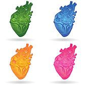 Heart human body anatomy sketch set