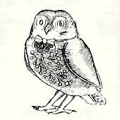 Owl-etching