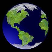 Growing Green Globe