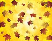 Falling Maple Leaves in Autumn Illustration