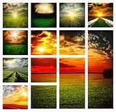 Beautiful fields collage