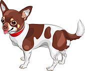 vector sketch dog Chihuahua breed smiling