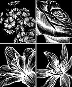 Set of backgrounds with decorative flowers, hand-drawing. Vector