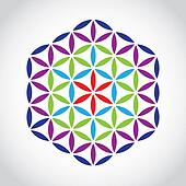 flower of life symbol color variations - illustration