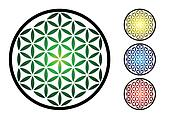 set of flower of life symbol - illustration