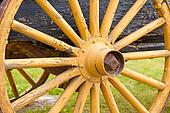 Old painted yellow wagon wheel on historic cart