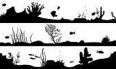 marine landscape