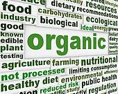 Organic products poster design