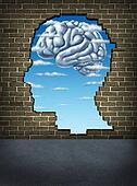Understanding Human Intelligence