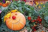 Smiling pumpkin on a harvest festival
