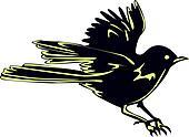 Black Bird Sparrow In Flight