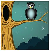owl on the tree