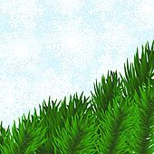 fir-tree and snowflakes background